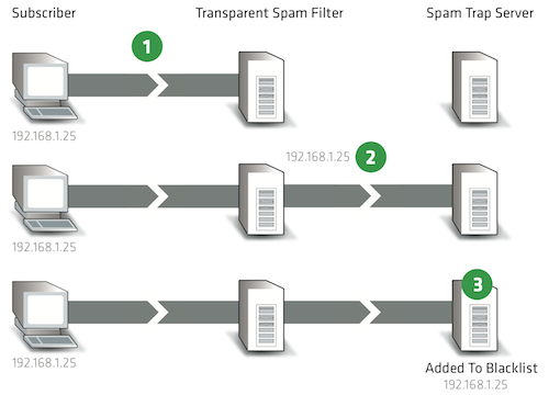 Graphic showing how it's possible to get onto a blacklist without even sending a spam message